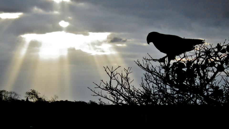 Galapagos islands view