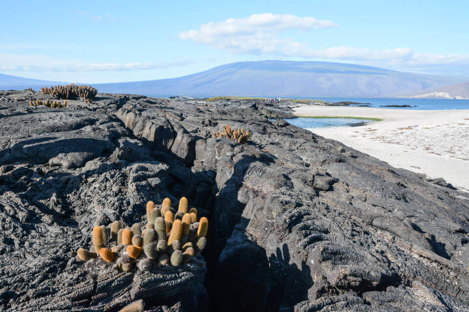 geology in the galapagos
