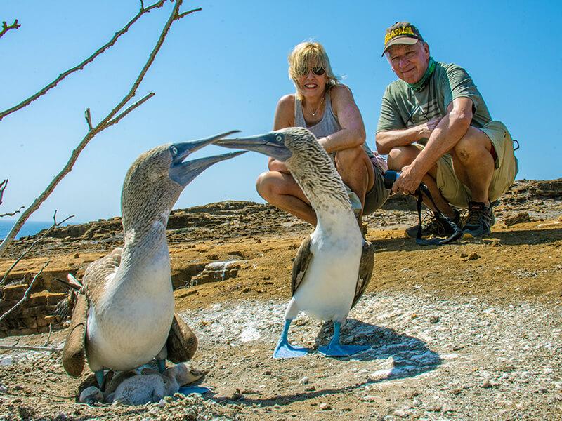 Galapagos islands: Punta Pitt