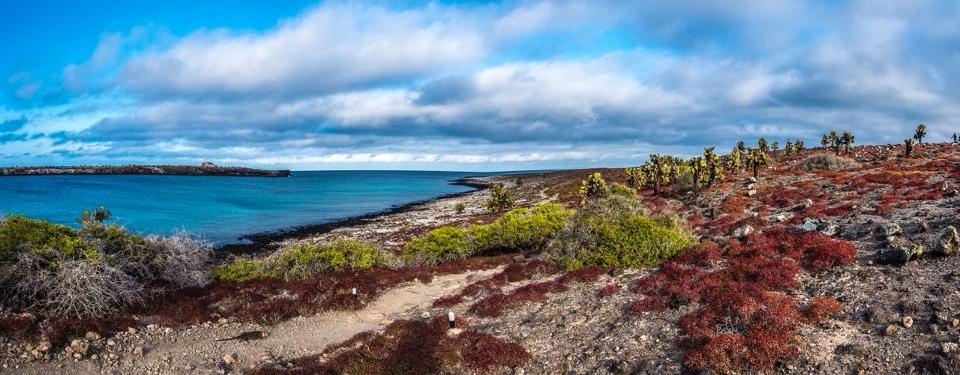 Galapagos islands: World Heritage site