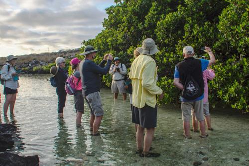Darwin Bay at Genovesa Island in Galapagos