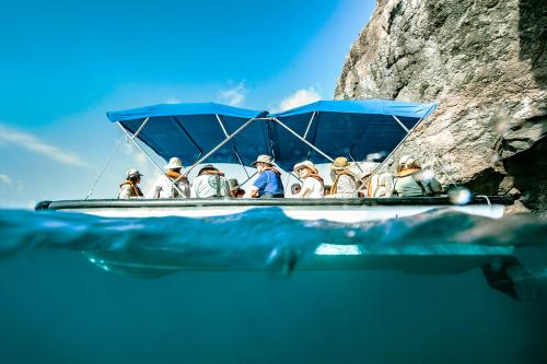 Glass-bottom boat Exploration at Gardner Bay (Española Island) in Galapagos