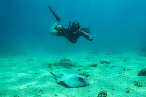 Snorkeling at Bartolome Island in Galapagos