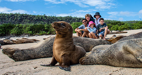 Family with Galapagos sea lions