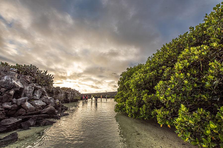 Darwin Bay on Genovesa Island